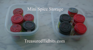 Mini Spice Storage