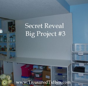 Blank Pegboard Secret Reveal Project #3