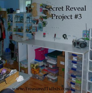 Secret Reveal Project #3 Pegboard in Transition