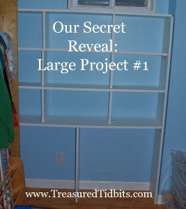 Secret Reveal White Shelf