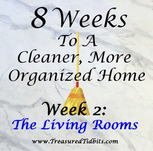 8 Weeks to A Cleaner More Organized Home Week 2