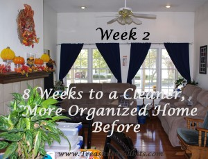 Week 2 Before 8 Weeks to a Cleaner, More Organized Home