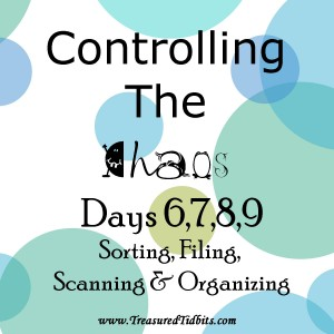 COntrolling the Chaos Daily Template
