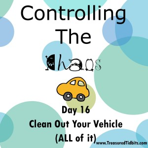 COntrolling the Chaos Day 16 CLean Out Your Vehicle