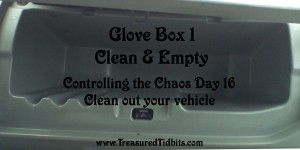 Clean and Empty Glovebox 1 Controlling the Choas Day 16