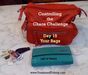 Controlling the Chaos Challenge Your Bags