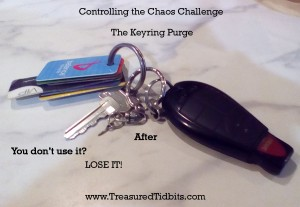 Controlling the Chaos Keyring Purge After