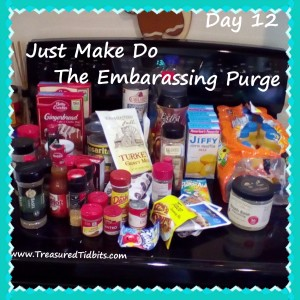 Day 12 The Embarassing Purge Just Make Do (3)
