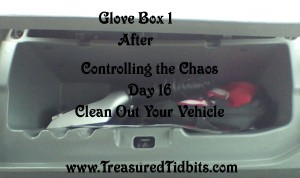 Glove Box 1 Controlling the Chaos Day 16 Vehicle Clean OUt After