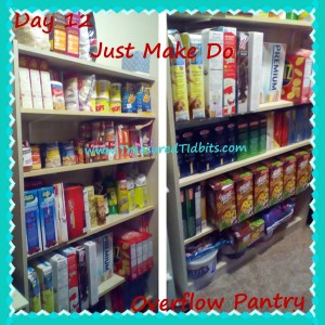 Just Make Do OverFlow Pantry Day 12 (3)