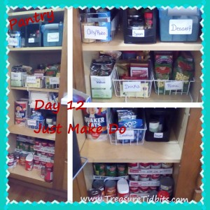 Pantry Day 12 Just Make Do (2)