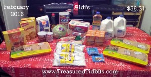 Aldis SHopping Trip February 2016