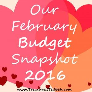 February Budget Snapshot 2016