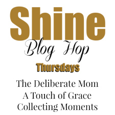 Link Up Shine Blog Hop Image