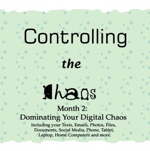 Controlling the Chaos Month 2 Dominating the Digital