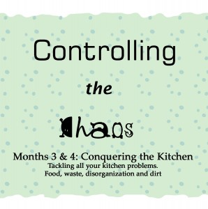 Controlling the Chaos Months 3 & 4 Controlling the Kitchen