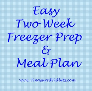 Easy Two Week Freezer Prep and Meal Plan