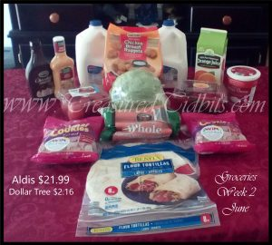 ALdi's Week 2 June's Shopping Trip