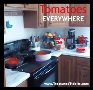 Tomatoes Everywhere Homemade