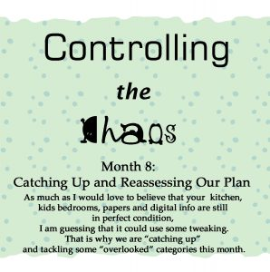 Controlling the Chaos Month 8 Catching Up and Reassessing Our Plan