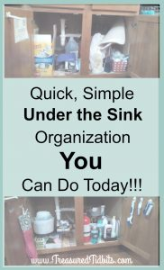 quick-simple-under-the-kitchen-sink-storage-you-can-do-today