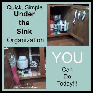 under-the-kitchen-sink-organization-facebook-square