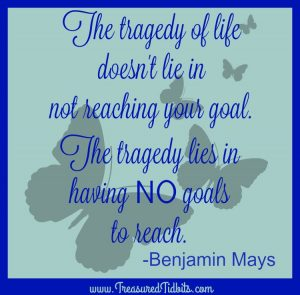 Tragedy of life does not lie in not reaching your goals. The tragedy lies in having no goals to reach. Benjamin Mays
