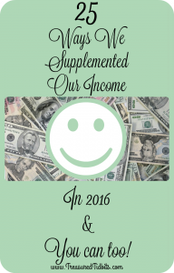 25 Ways We Supplemented Our Income in 2016 and You can too!