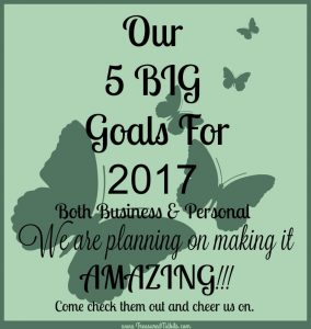 Our 5 Big Goals for 2017 and How We Plan To make it AMAZING!!!